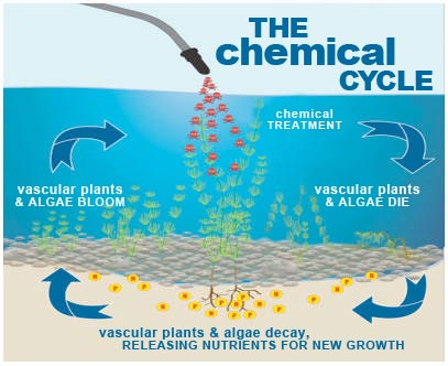 chemical-cycle