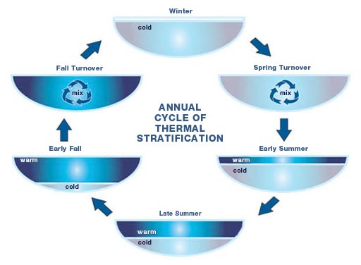 thermal-stratification